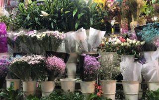 Yiwu Night Market Flowers