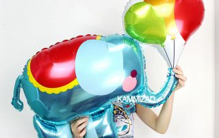 MindenSourcing Party Products Balloons 1 (3)